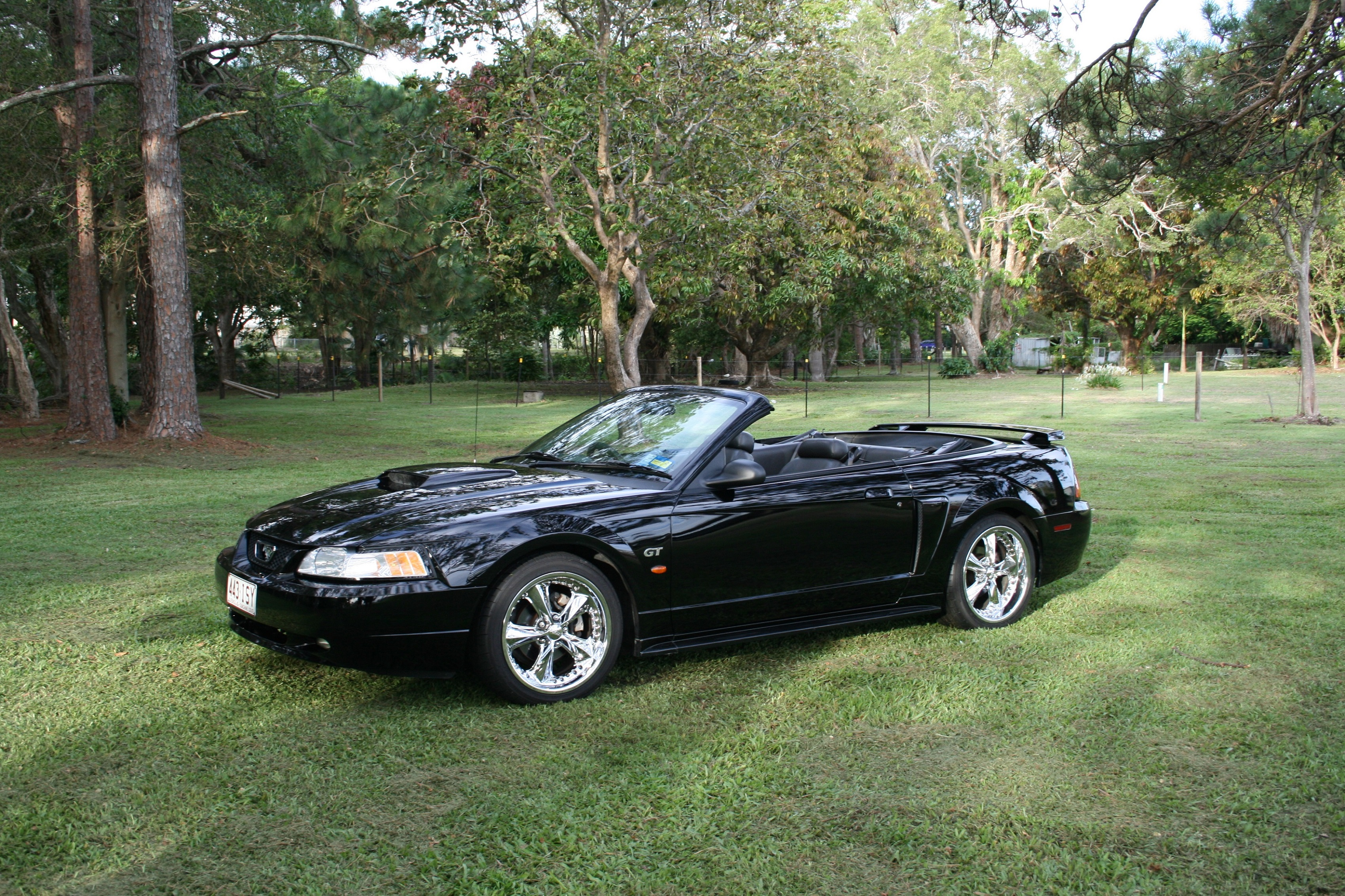 2001 ford mustang car sales qld sunshine coast. Black Bedroom Furniture Sets. Home Design Ideas